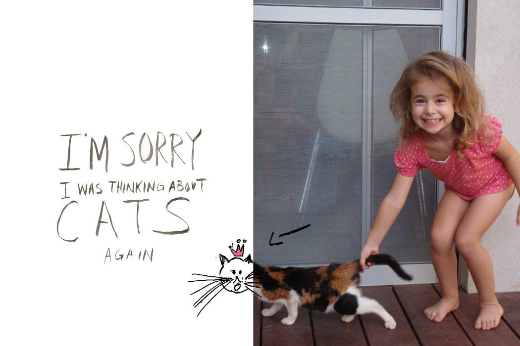 noa&cat