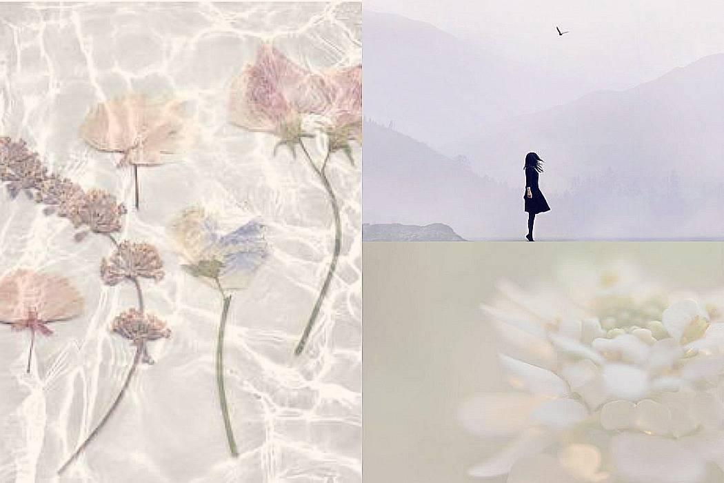 PicMonkey Collage88