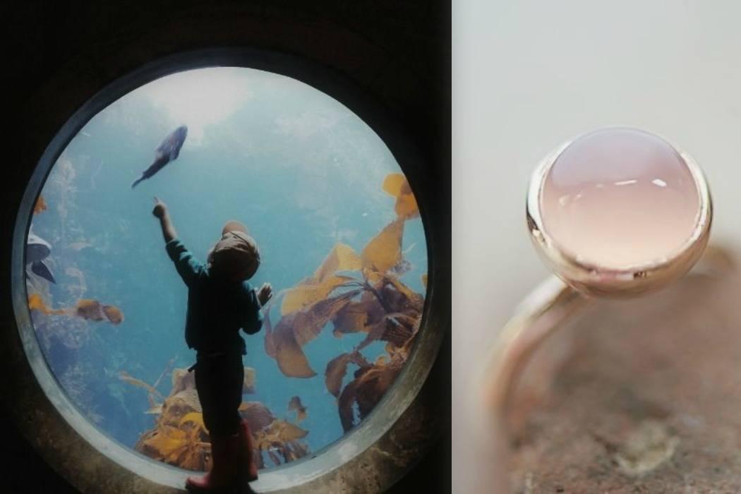 מציאה, מציאות מתוך הבלוג Tamari and me של תמרי סלונים ליבס