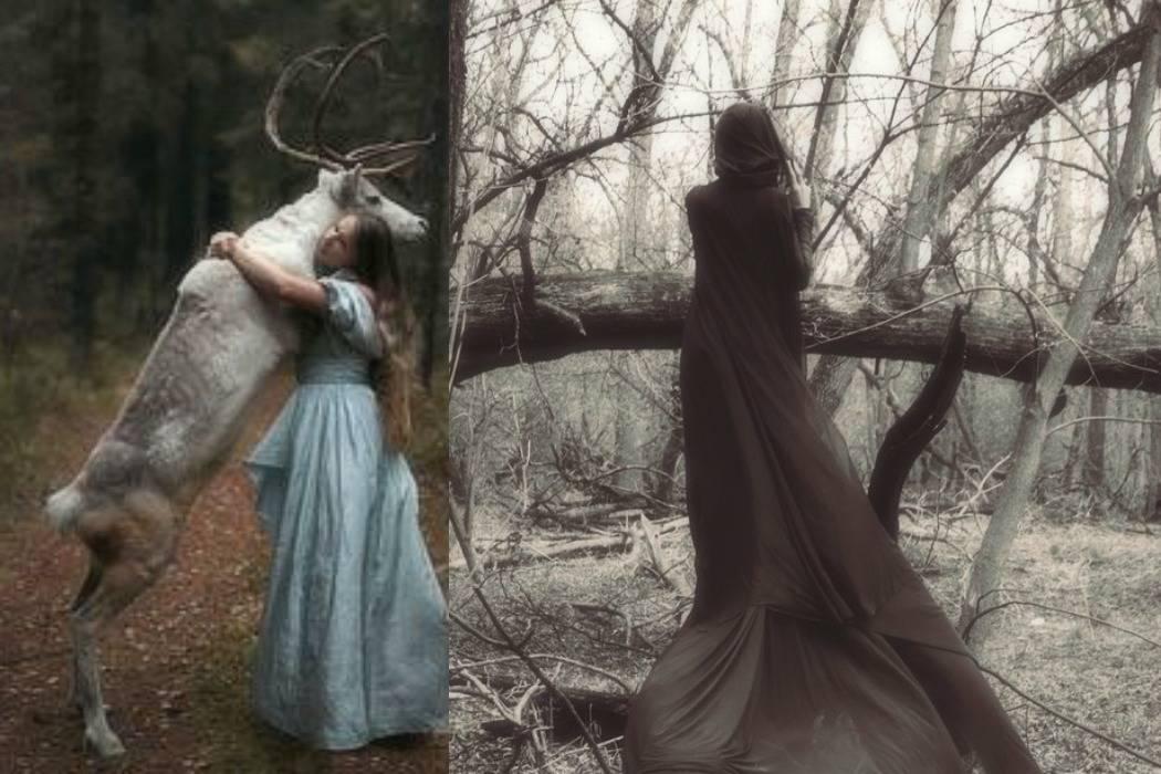 ללכת לאיבוד ביער מתוך הבלוג Tamari and me של תמרי סלונים ליבס