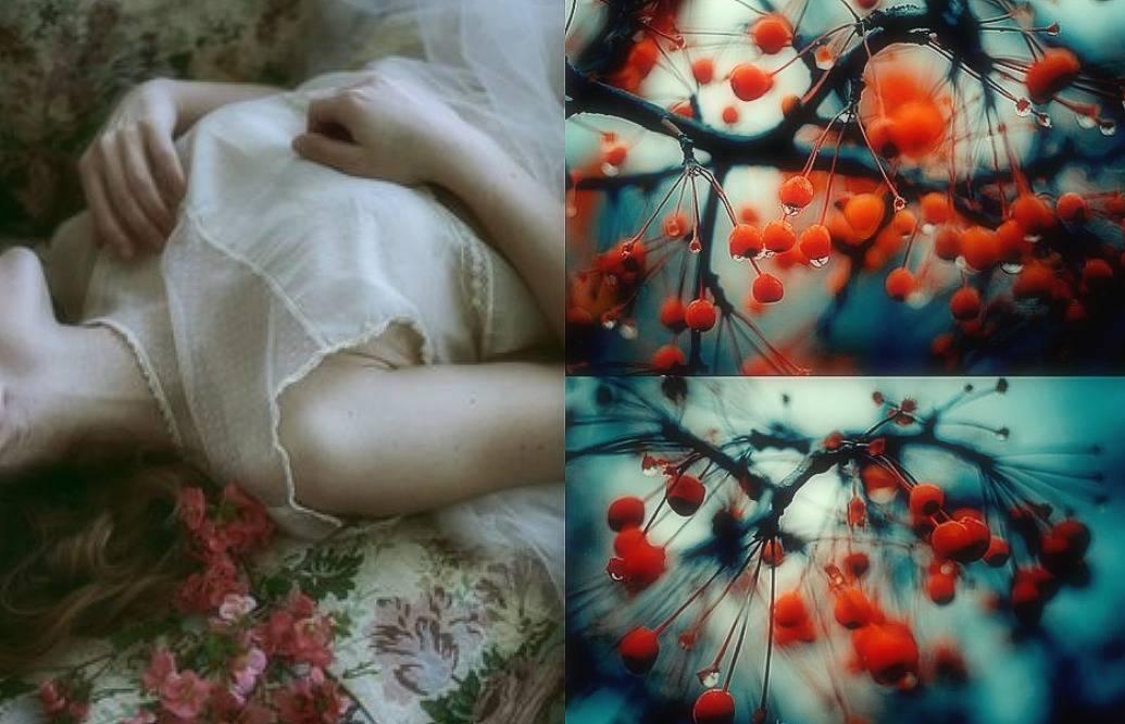 בית, הלב שלי הוא בית. מתוך הבלוג Tamari and me תמרי סלונים ליבס