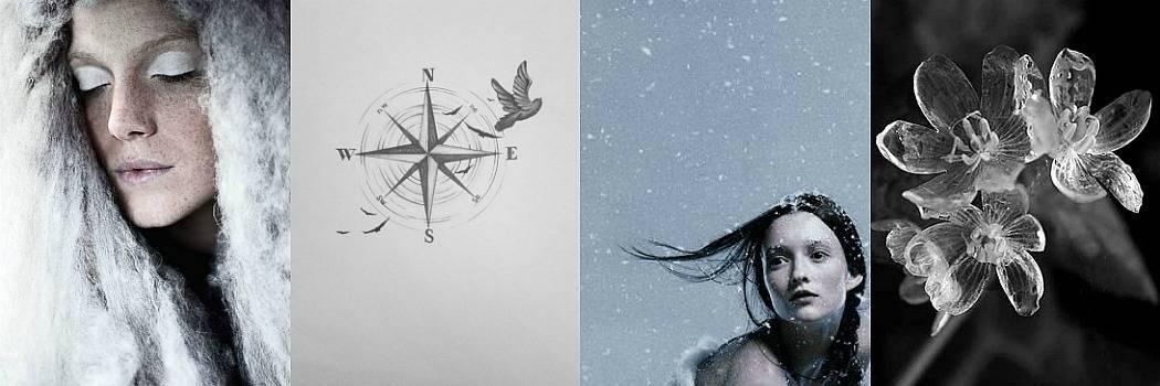 שלג, צפון, נורדי, מצפן, פרווה, קור, סקנדינבייה מתוך הבלוג Tamari and me של תמרי סלונים ליבס פוסט: 18:45 לא סופי