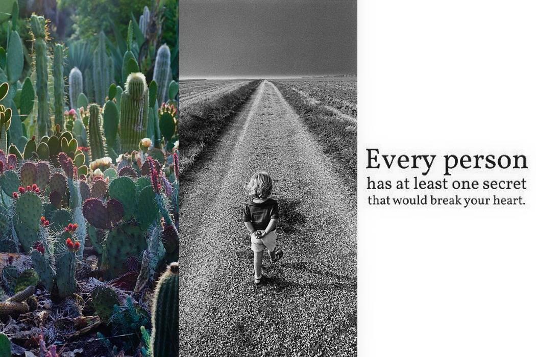 ילד בשדה, קקטוסים, סודות מתוך הבלוג Tamari and me של תמרי סלונים ליבס פוסט: סודות