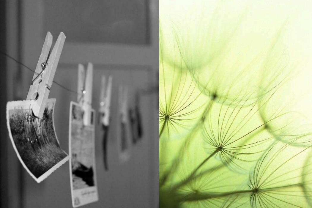 תמונות על חבל כביסה, סביונים מתוך הבלוג של תמרי אנד מי פוסט על יום הולדת תמרי סלונים ליבס